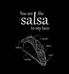 T-Shirt You Are The Salsa To My Taco