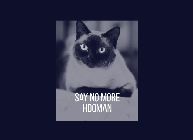 T-Shirt Say No More, Hooman